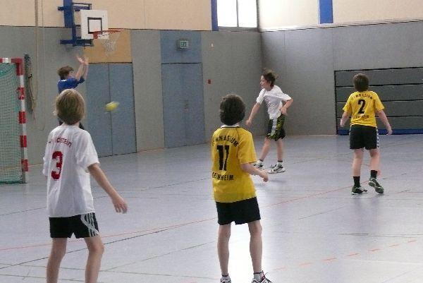 Handball13
